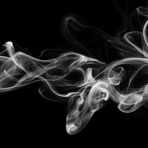 Smoke & Pellet